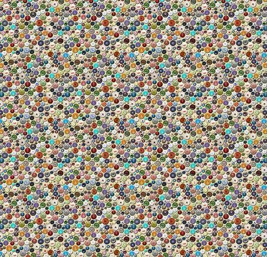 Vision Image 000458