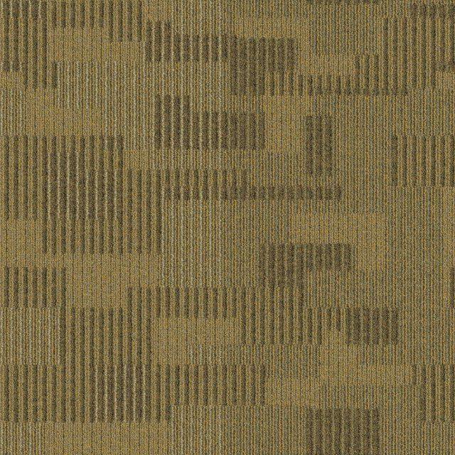 Burano 6604