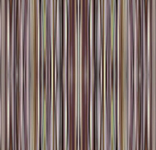 Vision Lines 700003 Spectrum Nutmeg