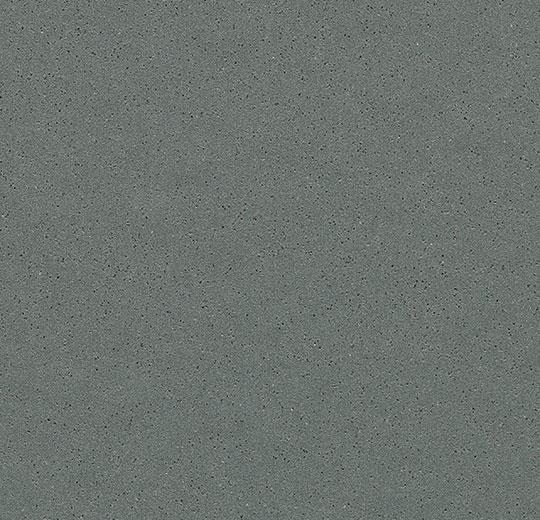 Surestep Steel 177982