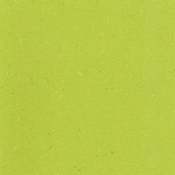 Colorette PUR 137-132