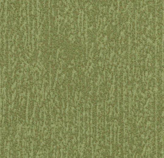 Colour t545027
