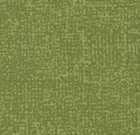 Colour t546019