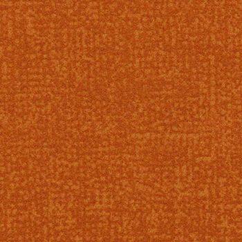 Colour t546025
