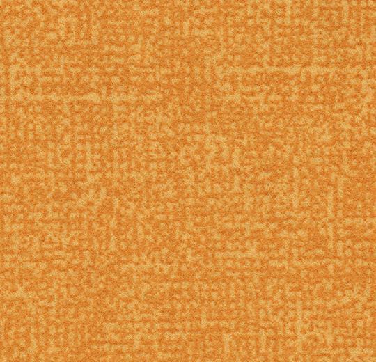 Colour t546036