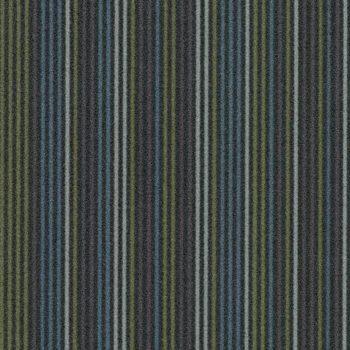 Linear t550004-t553004