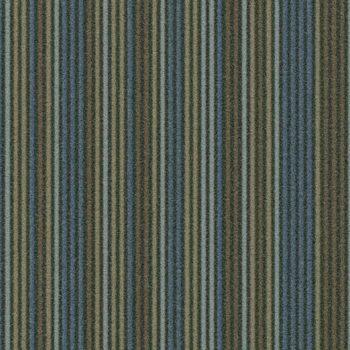 Linear t550005