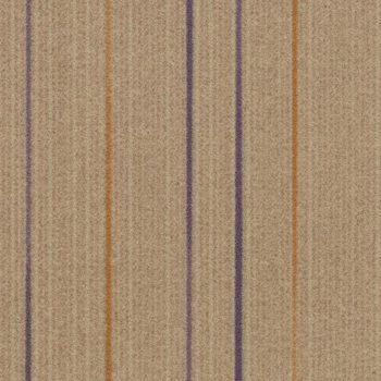 Linear t565005