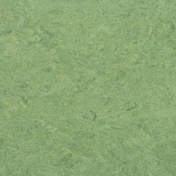 Marmorette 0100 Frog Green