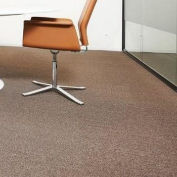 Vision Lines 850006 Groove Olive